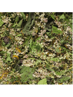 Ekologiška žolelių arbata KALEIDOSKOPAS